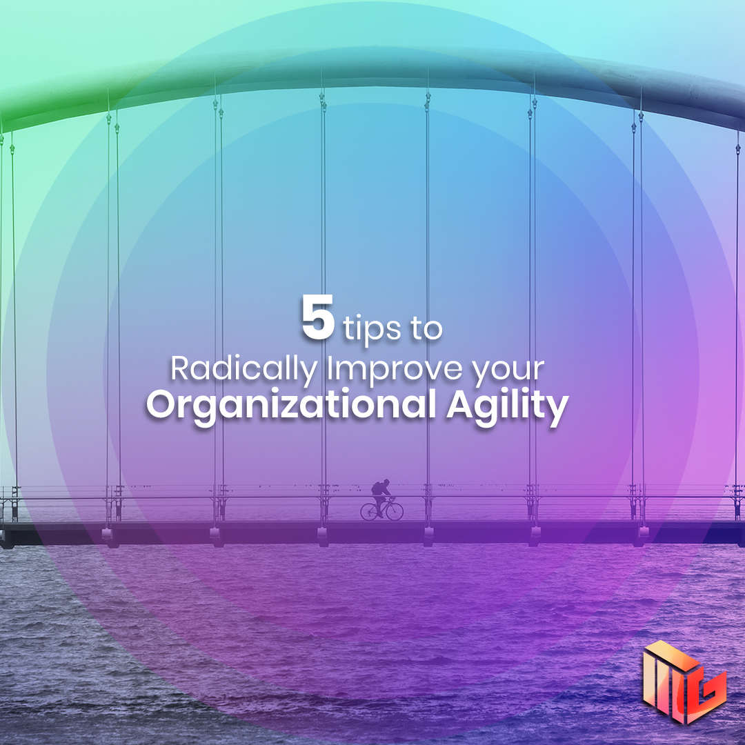 Organizational Agility: How to Make Your Business More Adaptable and Dynamic?